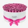 largebox_wit_metalic_paars_roses